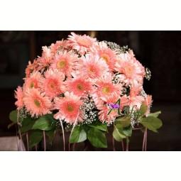 Buchet de 25 gerbera roz