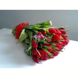 Buchet de 49 lalele rosii