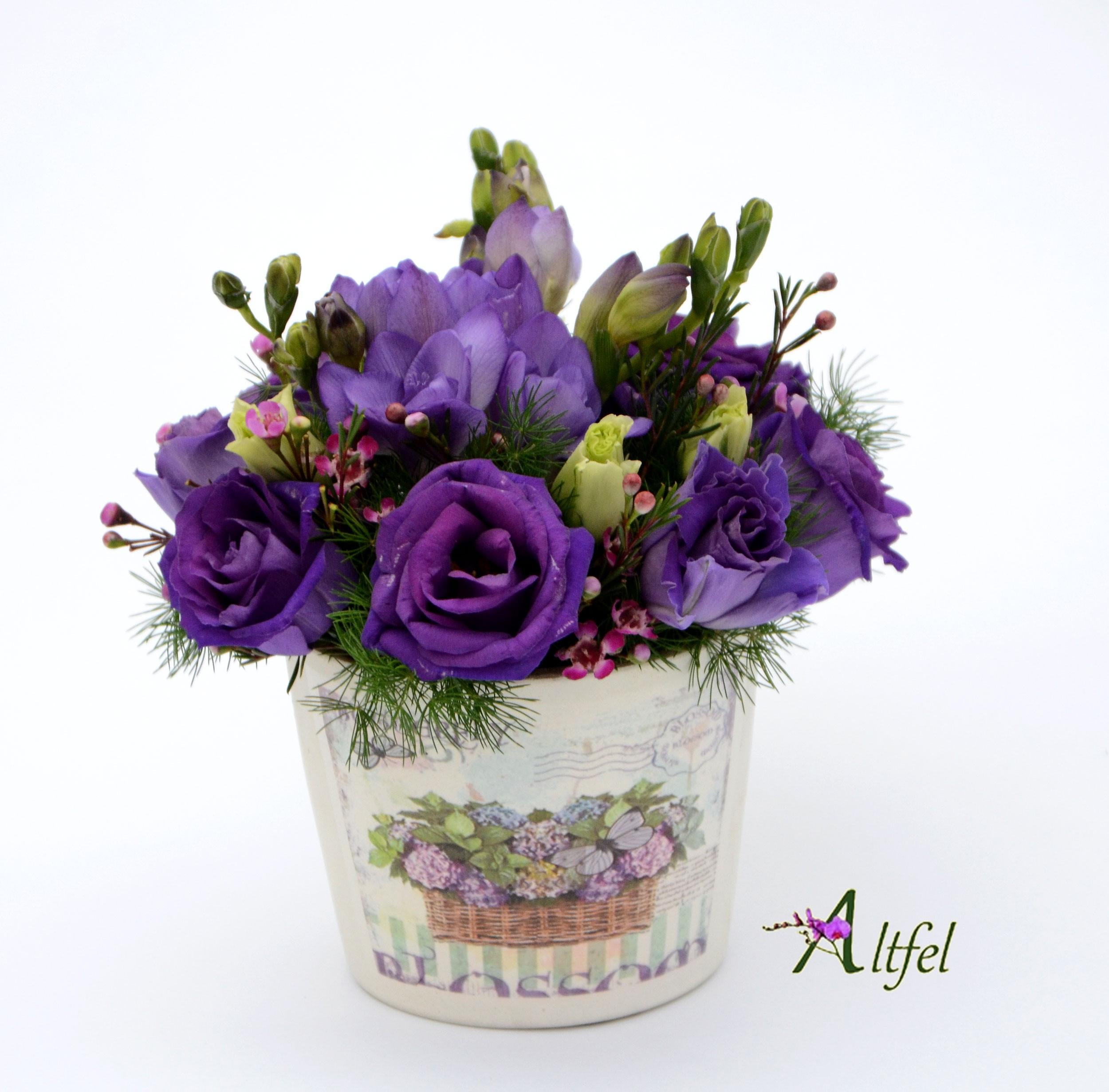 Set 10 Aranjamente Florale Martisor Violet Flori 1 8 Martie