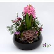 """Set 5 aranjamente florale ,,Gradina in miniatura"""""""