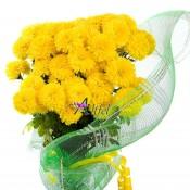 Buchet de 49 crizanteme galbene