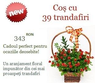 Aranjamente florale business