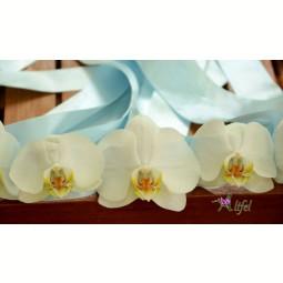 Corsaj orhidee